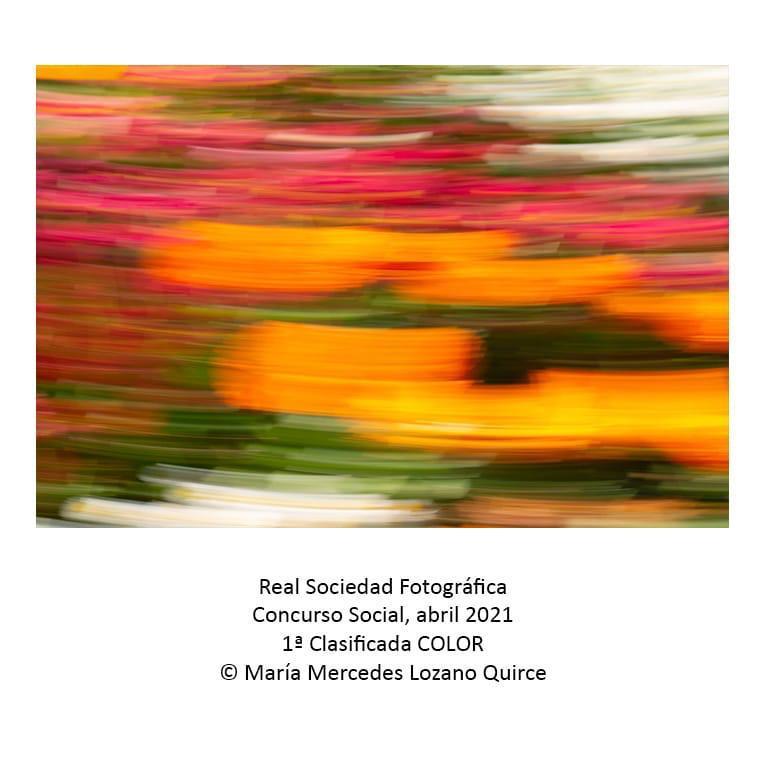 Real sociedad Fotografica 1 clasificada color
