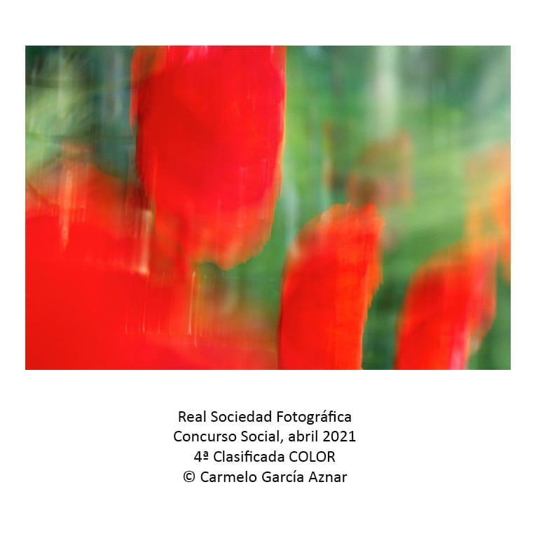 Real sociedad Fotografica 4 clasificada color